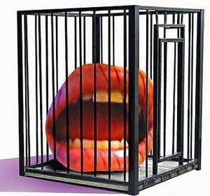 Quelles limites à la liberté d'expression ?